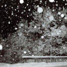 ploi-ninsori-si-vijelii-in-aproape-toata-tara-thumb-0